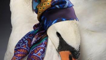 Новый шелковый шарф – новый образ